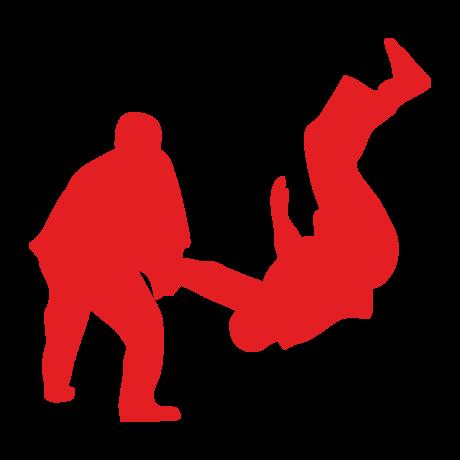 Tagdíj judo