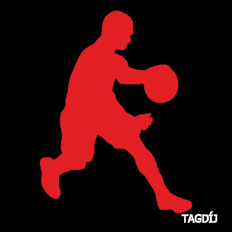 Tagdíj kosárlabda