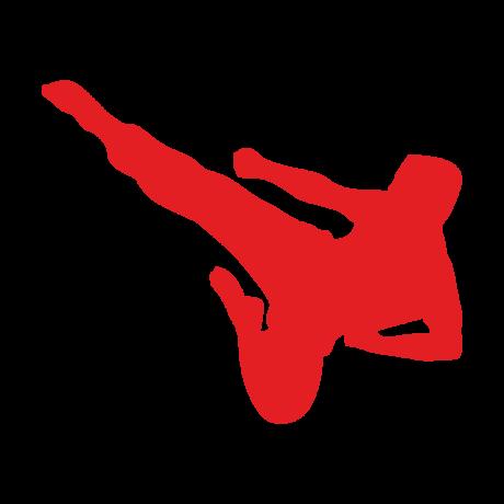 Tagdíj taekwondo versenyző
